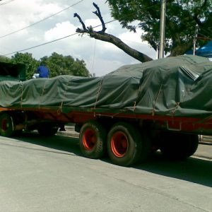 Waterproof Trapal or Tarpaulin